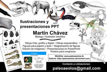Ilustrator service by PaleoAeolos