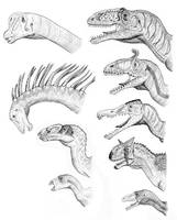 South American Dinosaurs by PaleoAeolos