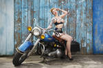 Harley Davidson by luciekout