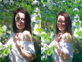 Spring or Summer? by xkuubi
