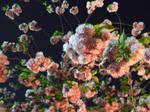 Sakura04 by sweetmoon