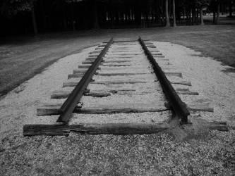 railroad by wildflower18