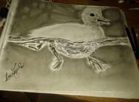the lovley duckling by anudeep41