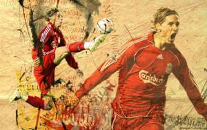 Fernando Torres 1 by HelterSkelter33