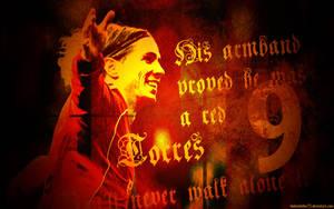 Fernando Torres 4 by HelterSkelter33