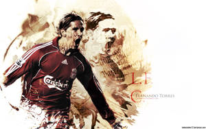 Fernando Torres 6 by HelterSkelter33