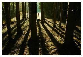 Walk on... by Ciril
