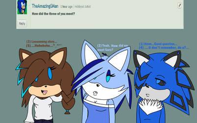 ..Ask Sara and Friends 1.. by Lillythehedgehog1