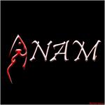 Anam Name English, Arabic/Urdu/Farsi Fusion by Net-Spidy