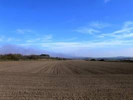 Field by senzostock