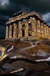 Selinunte, Sicily by Phil-Norton