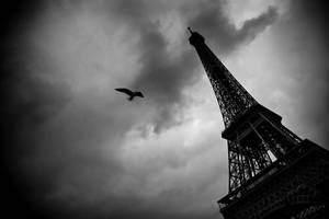Eiffel Tower 2 by Phil-Norton