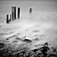 Wooden Posts by Phil-Norton
