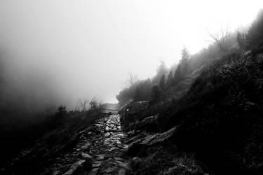 Trail by grafik1991
