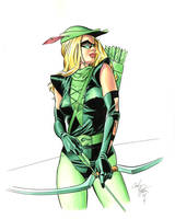 Female Green Arrow by andypriceart