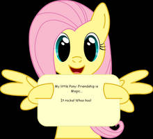 My thoughts on FIM by AvalarGuardian