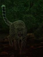 Leopard Manip by jennasettle