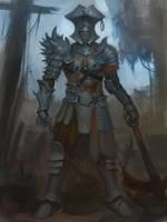 Pirate Knight by XiaTaptara