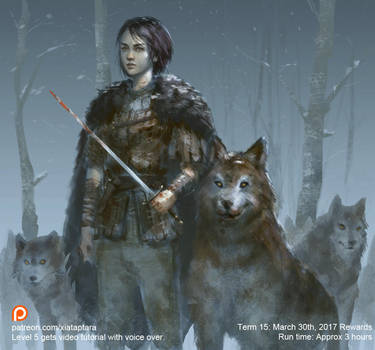 Arya Stark and Nymeria by XiaTaptara