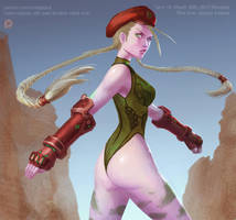 Street Fighter Cammy by XiaTaptara