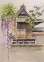 Wisteria at a shrine by blacktsubu