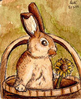 Coffee Bucket Bunny by TheVerdantHare