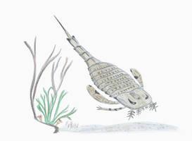 30 Day Paleoart Challenge Day 3: Eurypterus by DiegoOA