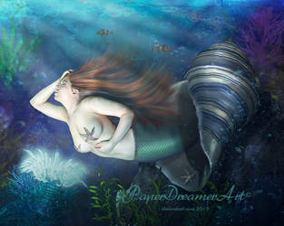 Under the Sea by PaperDreamerArt