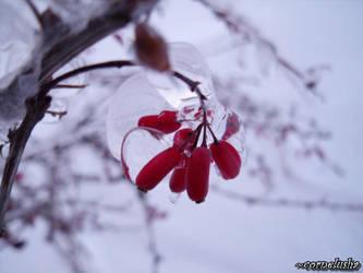 frozzen by cornelusha