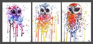 Owls! by bleistiftkind