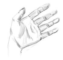 Amateur Hand by tamaneko-i-b