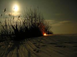 Night walker by DzikiGon