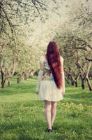 Into Dream by ann-emerald