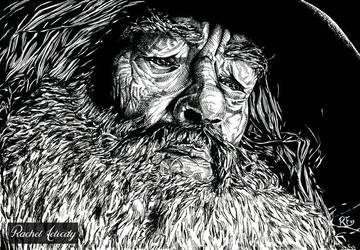 Gandalf by RachelFelicity
