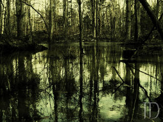 Dark Swamp by IMPRIS0N3D