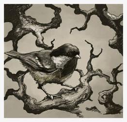 Bird on a branch by EDC9AF