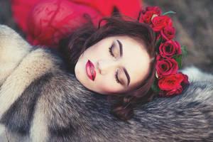 sleep sleep sugar by katrusya201