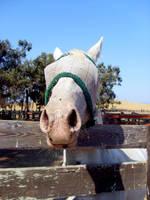 i am no moo-cow by ClickyPenPixieOfDoom