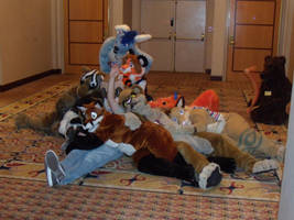 FWA '09 - Furpile by Draygone