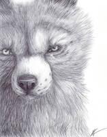 Wolf realism by yitchakandray
