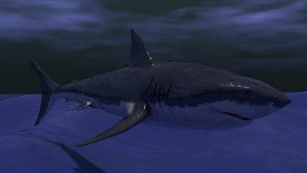White Shark by Lavik1988