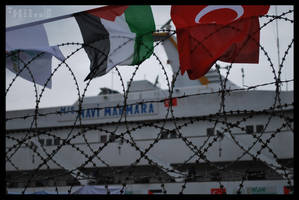 welcome home Mavi Marmara by darKnight-ulan