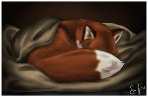 In the Warm Blanket by Jullelin
