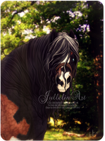 Handsome Thing by Jullelin