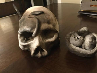 Skull Front View by PineapplesAreReal