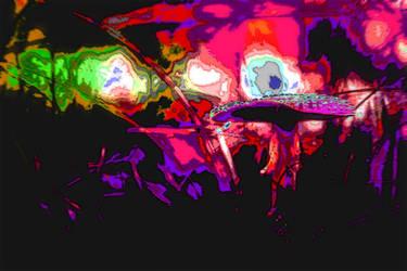 Mystical-muscaria by aciddmaus23