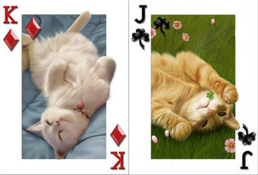 Cats Cards by MayYeo