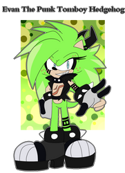 .::Evan The Punk Tomboy Hedgehog::.New OC::. by BeckyChelsea