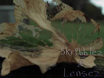 Leaf 1   Set DLM by SkriBlerLenZ