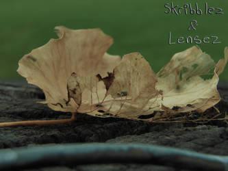 Leaf 4   Set DLM by SkriBlerLenZ